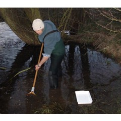 West Mercia Constabulary Great crested newt mitigation & monitoring image 1